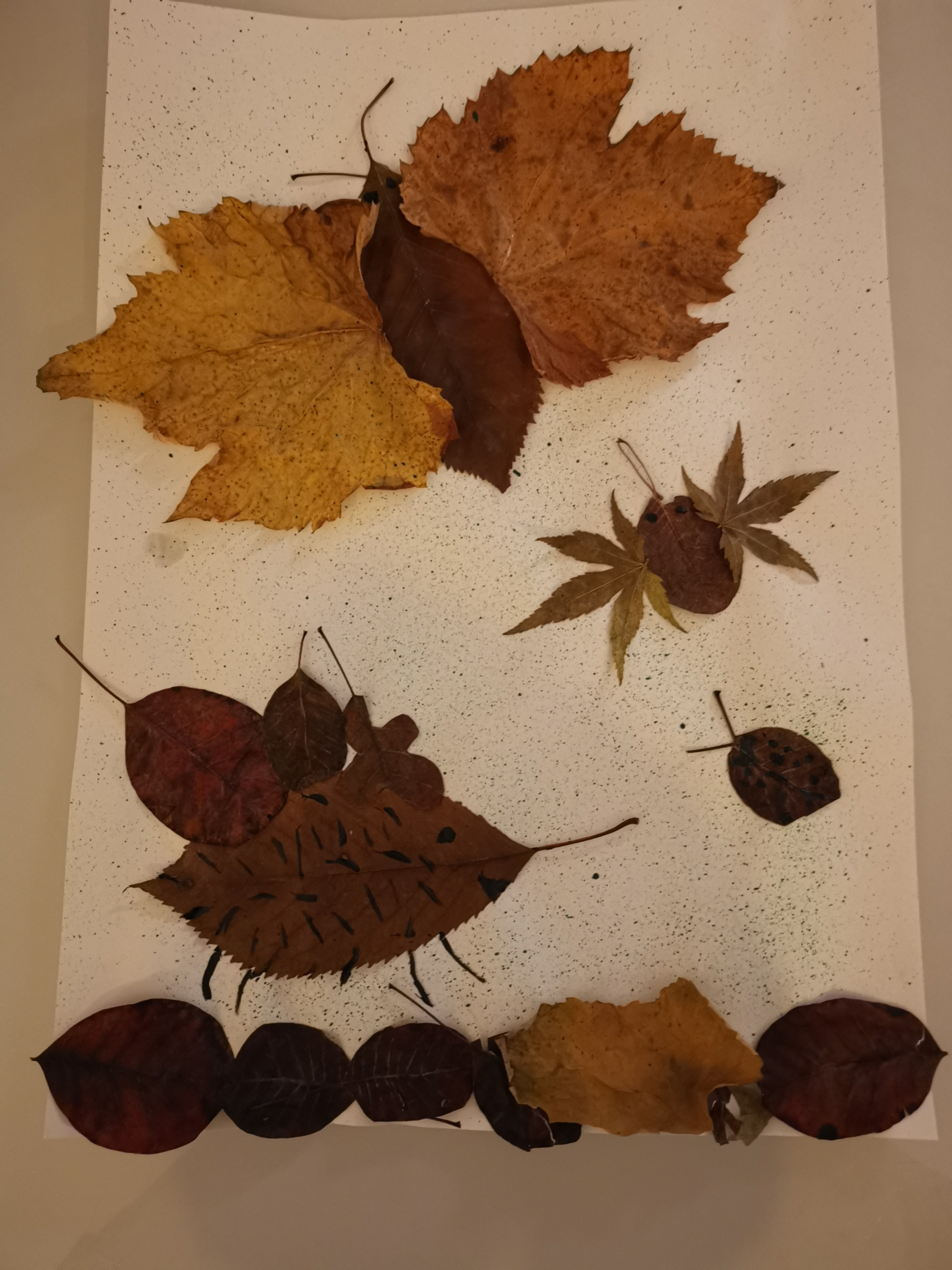 jesen-10